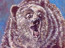 bear copy